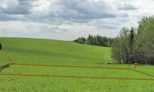 Уточнение границ земельного участка