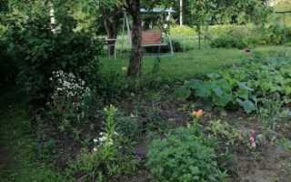 Договор купли-продажи садового участка – образец, правила заполнения