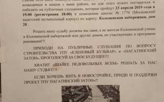 Реновация Нагатинский Затон новости