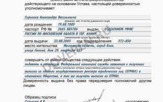 Генеральная доверенность от юр. лица – образец, правила заполнения
