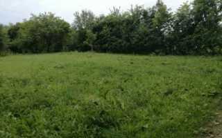Как перевести земли сельхозназначения в земли поселений