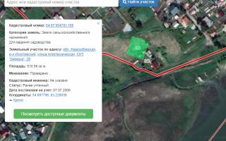 Кадастровая ошибка в местоположении границ земельного участка