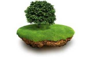 Особенности ипотеки земельных участков