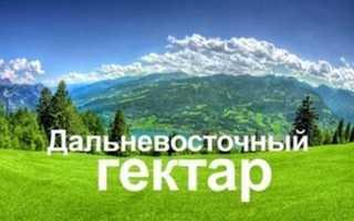 Как получить землю от государства бесплатно на дальнем востоке