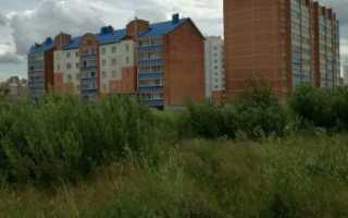 Многодетным семьям вместо земли могут выдавать квартиры