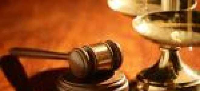 Договор на оказание услуг – образец, правила заполнения