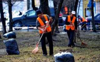 Не чистят дворы: куда жаловаться